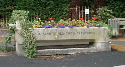 a former cattle trough filled with flowers